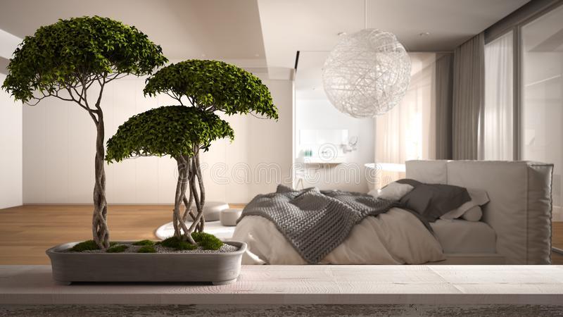 bonsai in bedroom- Hunar Home Decor course