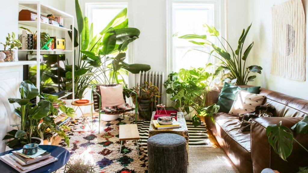 plant decor- Hunar Home Decor course