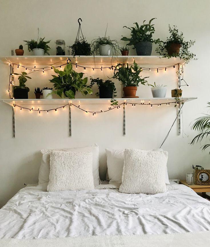 plant decor in white room- Hunar Home Decor course