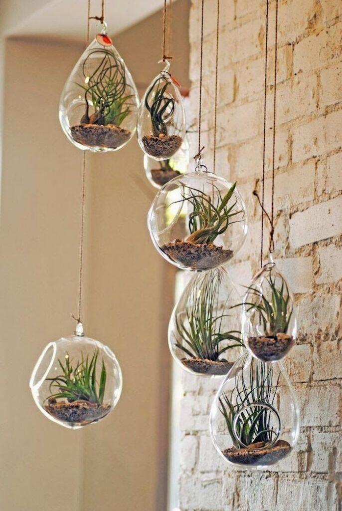 plant decor terrarium