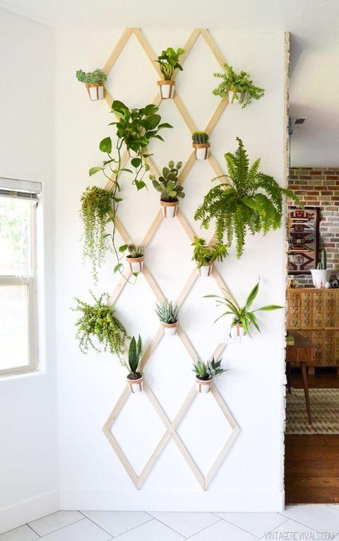 wall-hanging garden in living room
