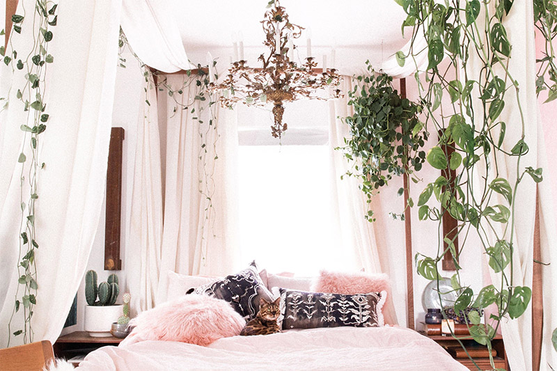 wild plants in bedroom- Hunar Home Decor course