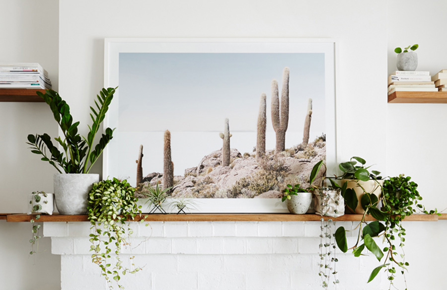 home interior plants online courses