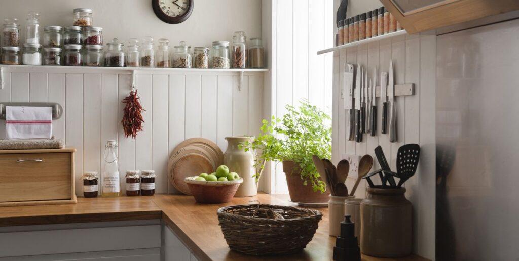 plants in kitchen